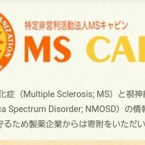 MS キャビン ウェブフォーラム