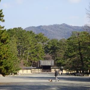 京都御苑。