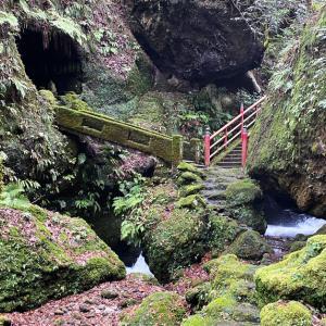 【千巌渓 せんがんけい】苔と渓谷の名所!上市町の癒しの観光スポット☆