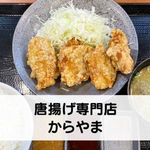 【唐揚げ専門店からやま】早速行ってきた!富山飯野店オープン☆