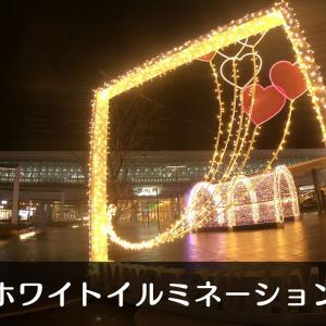 【写真付】ホワイトイルミネーション富山2020-2021【富山駅や城址公園】
