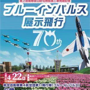【ブルーインパルス富山】飛行開始時間やビュースポット【砺波チューリップフェア】