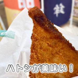 【ハトシが美味い】魚津駅の熱々オヤツ!お土産にもオススメ【長崎名物?】