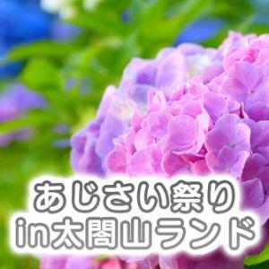 【あじさい祭りin太閤山ランド2021】県内最大級【約100種2万株】