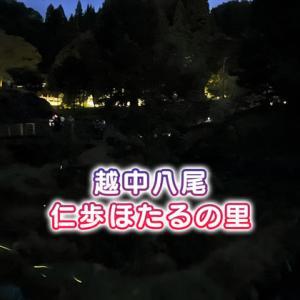【仁歩ほたるの里農村公園】富山市八尾でホタル鑑賞してきた【駐車場&アクセス】