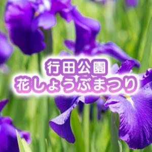 【滑川市の花しょうぶ祭り2021】行田公園ではライトアップにキャンドルナイトも!