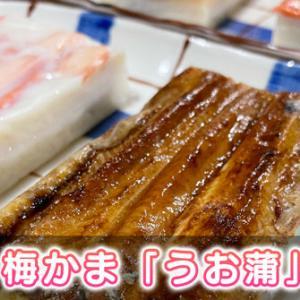 【うお蒲の口コミ】寿司の蒲鉾!? 梅かまの贅沢蒲鉾ギフトを食べてみた!