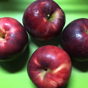 リンゴ追分を歌いながら紅玉を煮る