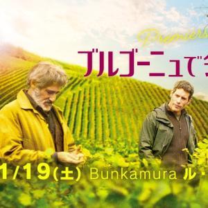 映画「ブルゴーニュで会いましょう」をソムリエ目線でざっくり感想文