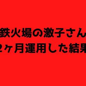 咲・鉄火場の激子さんを2ヶ月運用した結果【FX初心者】