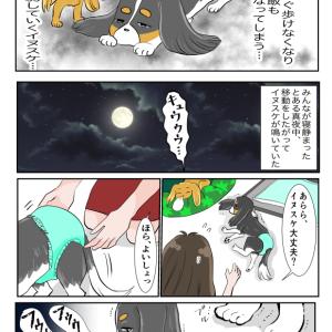 【犬】必ずくる別れ…2【家族】