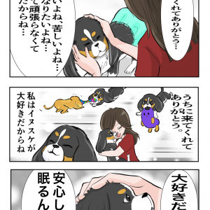 【犬】必ずくる別れ…3【家族】
