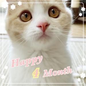 生後4ヶ月のお誕生日でした。