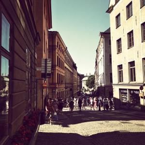 【はじめまして】スウェーデンの大学院に留学します!