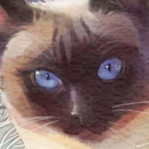 テーマを決めて描く【猫】
