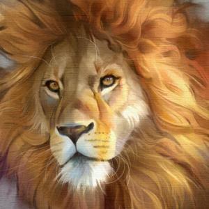 ライオンの教材を制作しました