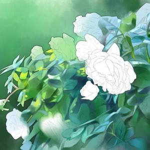 バラを描く1