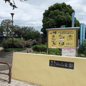 練馬区:向山公園