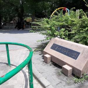 筋トレ公園 練馬区:わかみや公園