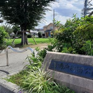 筋トレ公園 練馬区:橋戸新田公園
