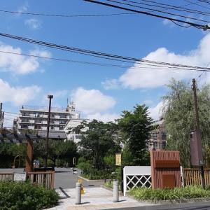 筋トレ公園 練馬区:北町上宿公園