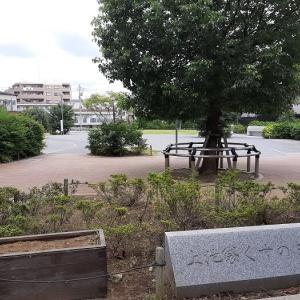 豊島区:上池袋くすのき公園