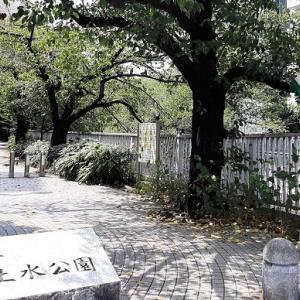 新宿区:神田上水公園