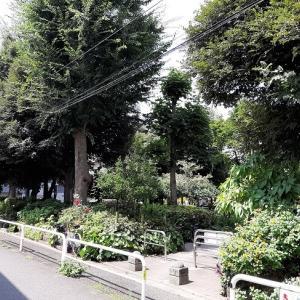 新宿区:大東橋公園