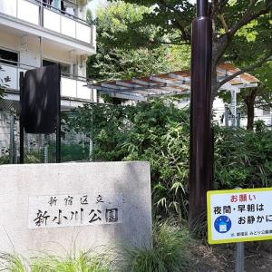 新宿区:新小川公園