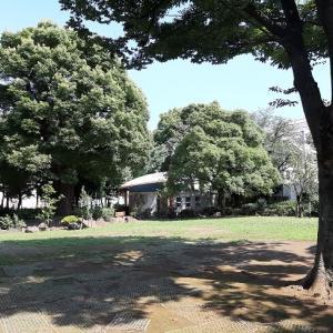 新宿区:百人町ふれあい公園
