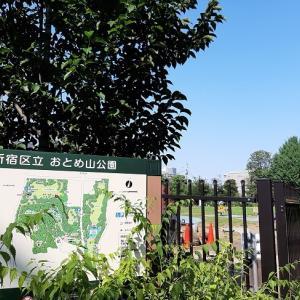 新宿区:おとめ山公園