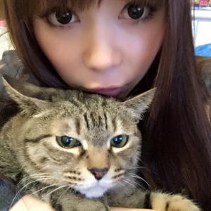 【悲報】中川翔子さん、ストーカー被害「引っ越さなければマミタスともっと一緒にいられたのに」