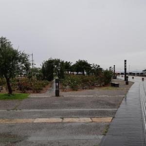 高松観光 サンポートの噴水と香川県のソウルフード骨付鳥 小豆島旅行②