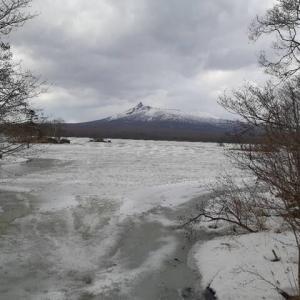 函館から大沼公園へ 3月下旬の大沼公園でだんごを食べる