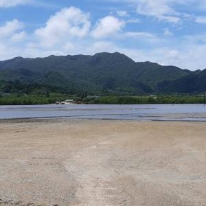 水牛車で海を渡っていく島がすごい【由布島観光記】