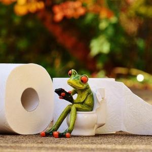 """便座が無い?紙を流せない?知っていたら役立つメキシコの""""トイレ事情""""&トラブルシューティング"""