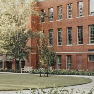 まだまだ本調子ではない大学キャンパス    A university campus that isn't like it used to be