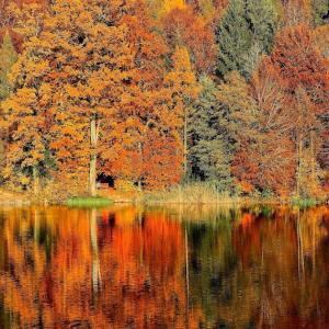 「秋」の 英訳は fall ?    autumn?                   the difference between fall and autumn