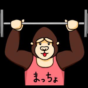 アラサーのダイエット生活習慣 68日目「徐脂肪と筋肉増」