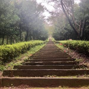 【長崎をラン】琴平岳スカイパークの999段の階段を走破!