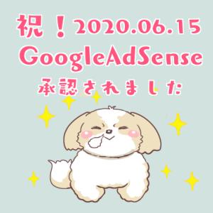 【最新】2020.6.15 Google AdSenseの審査をブログ初心者のおじさんが通過できた方法を紹介します
