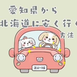 愛知県から北海道に安く旅行をする方法!【格安航空、個人手配が最安値です】