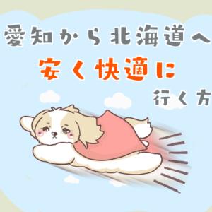 安く北海道に行く!快適に旅をする為の【3つの注意点】愛知版