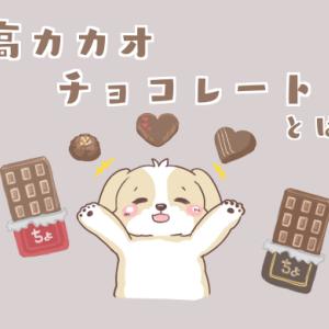【簡略】高カカオチョコレートの効果や種類、食べるタイミングを簡単にまとめました