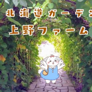 旭川観光なら「上野ファーム」へ【北海道1メルヘンな世界観が魅力です】