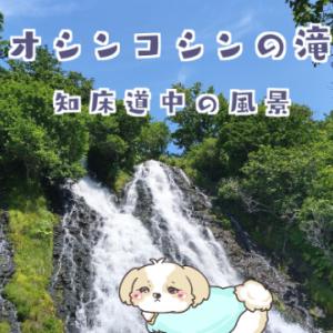 オシンコシンの滝からウトロ海岸沿いの風景【2020年夏】