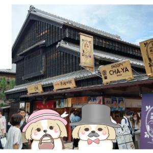 【スヌーピー茶屋 伊勢】の店内レビューと最新のコロナ事情