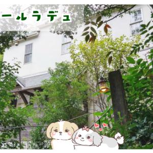 美浜町のカフェ「フレベールラデュ」愛知県で海が見えるカフェならココ!