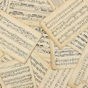 ベースを弾くひとも、ト音記号が読めるようにした方がいい話【へ音脱却】