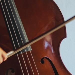 弓で弾くと、かすれて音が出ない場合のカンタンな対処法【コントラバス】